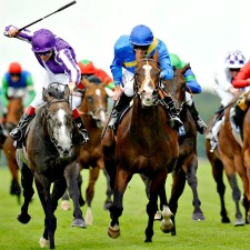 best horse racing betting sites